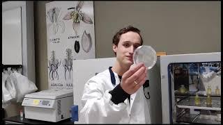 Vlog BSc Biologie