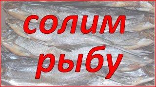 Солим рыбу. Жизнь в деревне.