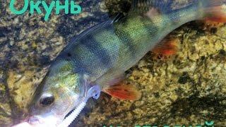 Отчет о рыбалке озеро таватуй