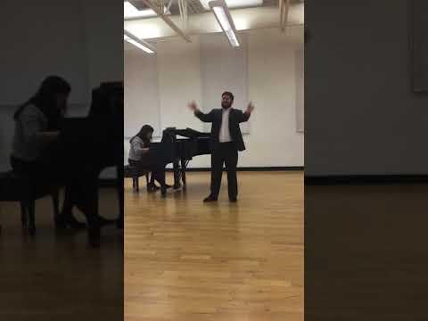 """""""Aprite un po' quegli Occhi"""" from Mozart's The Marriage of Figaro"""