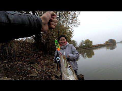 НАЛОВИЛИ ЩУКИ НА ЦЕЛЫЙ  АВТОКЛАВ | сделали рыбные консервы из щуки
