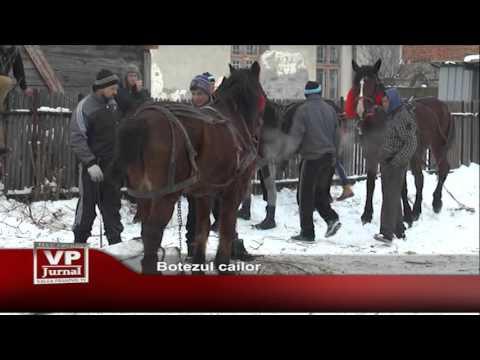 Botezul cailor