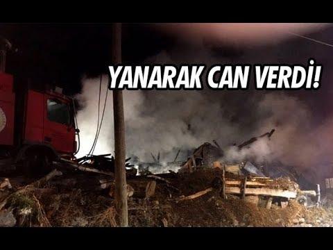 Yanarak Can Verdi!