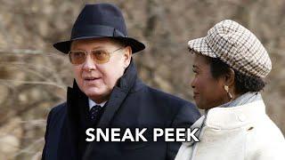 Sneak Peek 'Red & Anne'