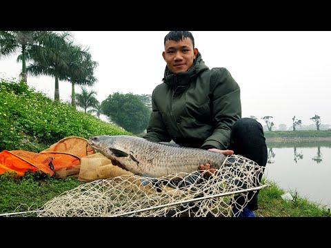 #cauca #CauCaHoangDa Fishing | Buổi Câu Giật Túi Bụi Gặp Trắm Đen Khủng Lôi Tí Lao Xuống Hồ