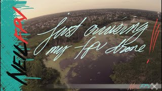 Just Cruising | FPV Freestyle | Exner Marsh Conservation Park