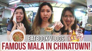 RI RI HONG MALA XIANG GUO - CHEAP & FAMOUS MALA STALL IN CHINATOWN | Eatbook Vlogs | EP 25