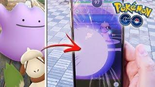 Smeargle  - (Pokémon) - ¿¡Se transformará SMEARGLE copiando los ataques de Ditto!? Bug brutal en Pokémon GO! [Keibron]