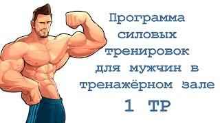 Программа силовых тренировок для мужчин в тренажёрном зале (1 тр)