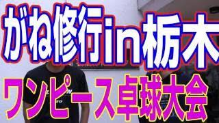 ガネ修行栃木県ワンピース卓球大会に参加してみたXiaコーチとがねの1年間の日記卓球知恵袋