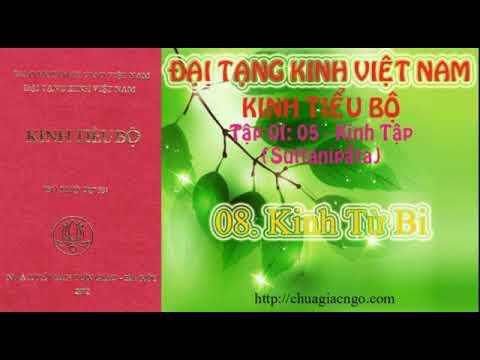 Kinh Tiểu Bộ - 065. Kinh Tập - Chương 1: Phẩm Rắn - 08. Kinh Từ Bi