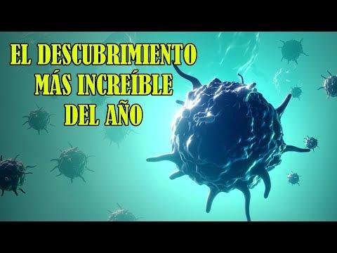 Descubren un Virus que Destruye TODOS los Tipos de Cáncer