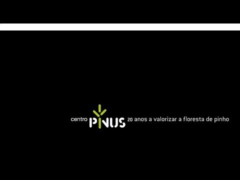 Centro PINUS 20 ANOS