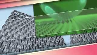 Bitkilər aləmi - Lotus bitkisi (ağ su zanbağı)