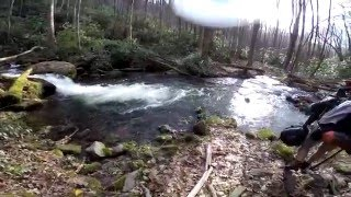 Video from my trip with my father along Hazel Creek Trail.