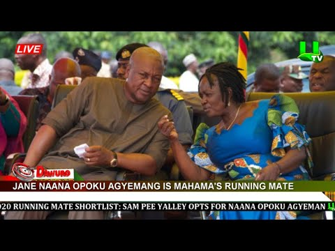 Prof. Jane Naana Opoku Agyemang Is Mahama's Running Mate For 2020 Election