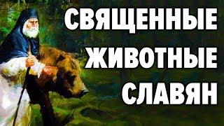 Posvätné zvieratá medzi Slovanmi