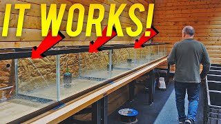 We Built an AMAZING Water Change System