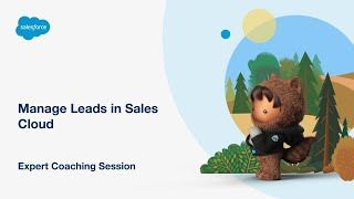 Manage Leads in Salesforce Sales Cloud
