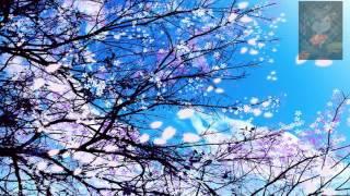Đàn Cổ Cầm : Dương Xuân Bạch Tuyết (阳春白雪)