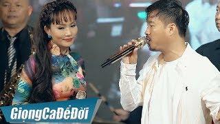 Video hợp âm Gác Nhỏ Đêm Xuân Lâm Minh Thảo