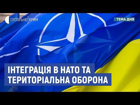 Інтеграція в НАТО та територіальна оборона| Тема дня | Тарас Чмут, Андрій Кобзарь