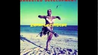 Arrested Development In The Sunshine - Zingalamaduni