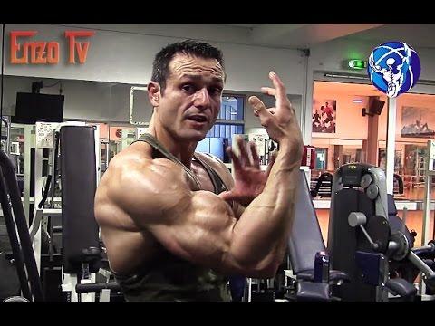 Tous les muscles de la cuisse de la fonction