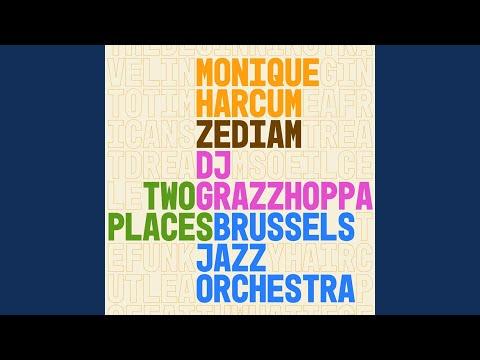Traveling into Time, Pt. II (feat. Zediam & DJ Grazzhoppa)