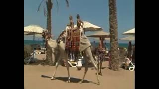 Русские снова в Египет! отдых в Египте цены 2016 на все включено.