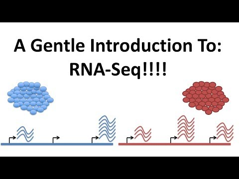 StatQuest: A gentle introduction to RNA-seq