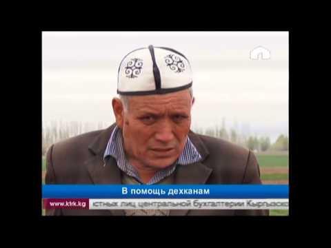 Кредитный брокер красноярск отзывы