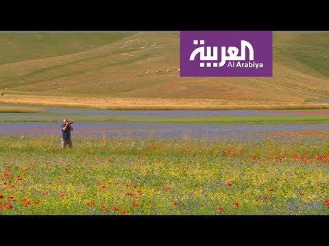 العرب اليوم - شاهد: مهرجان لأصحاب الشعر الأحمر فقط في روسيا