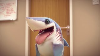 Picture of a TV show: Shark Week