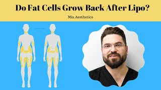 Do Fat Cells Grow Back After Lipo? | Mia Aesthetics
