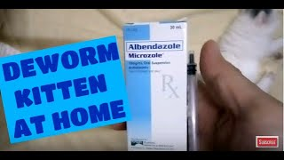 How to deworm kitten using Albendazole Microzole