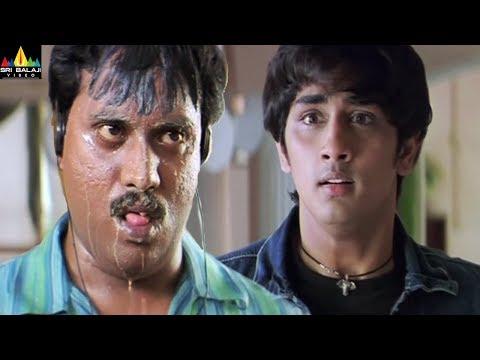 Nuvvostanante Nenoddantana Movie Scenes | Siddartha and Sunil Comedy Back to Back | Sri Balaji Video