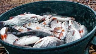 Когда открытие рыболовного сезона в подмосковье
