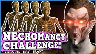 SKYRIM NECROMANCY ONLY CHALLENGE IS BROKEN - Skyrim is a Perfectly Balanced game with no exploits