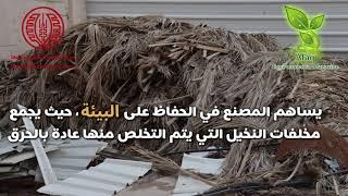 أول مصنع فلسطيني ينتج الورق ...