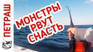 МОНСТРЫ РВУТ СНАСТЬ!!! Такой рыбалки ещё не было!