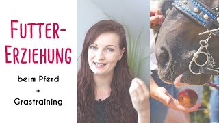 Futterlob & Futtererziehung beim Pferd + Grastraining!