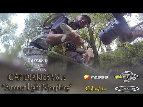 Andrey di castagne video su pesca