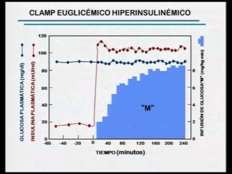 Qué efecto elevados de insulina en sangre