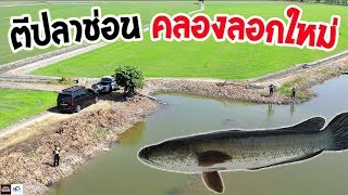น้าเณรพาออกหมาย คลองธรรมชาติ   เด็กตกปลา