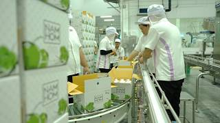 The innovations at Tako Foods