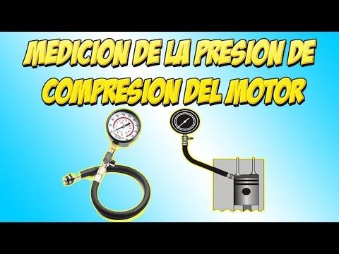 Hipertensiva en Adler