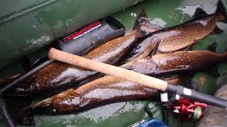 Когда лучшее время для рыбалки в карелии