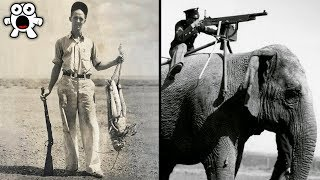 Historical Photos You Must See Before You Die
