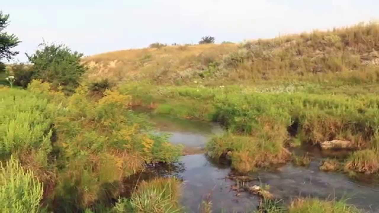 Boyd Ranch